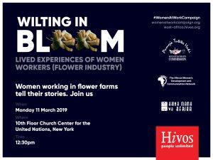 CSW Wilting in Bloom Hivos